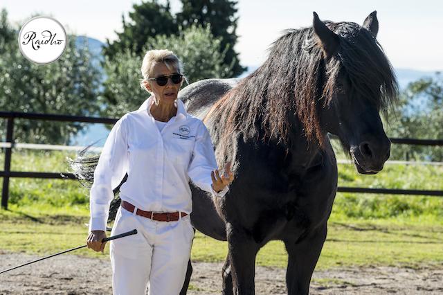 Das Pferd, der weltbeste Coach